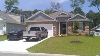 North Myrtle Beach Single Family Home For Sale: 1109 Inlet View Dr.