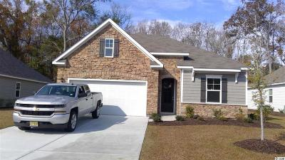 North Myrtle Beach Single Family Home For Sale: 1138 Inlet View Dr.
