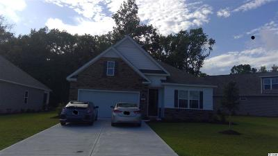 North Myrtle Beach Single Family Home For Sale: 1006 Inlet View Dr.