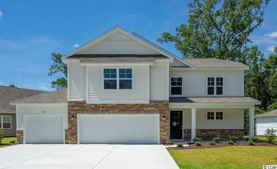 North Myrtle Beach Single Family Home For Sale: 1204 Inlet View Dr.