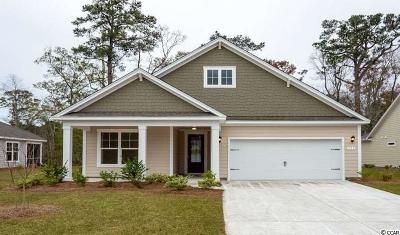 Pawleys Island Single Family Home For Sale: 153 Castaway Key Dr.