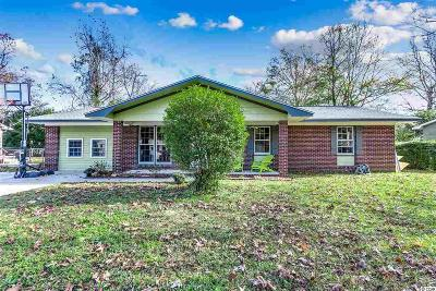 Horry County Single Family Home For Sale: 157 Ranchette Circle