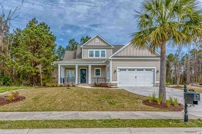 Myrtle Beach Single Family Home For Sale: 1187 E Isle Of Palms Dr.