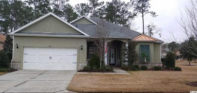 Georgetown County, Horry County Single Family Home For Sale: 402 Valhalla Ln.