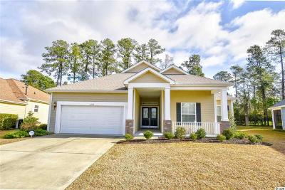 Georgetown County, Horry County Single Family Home For Sale: 1636 Murrell Pl.