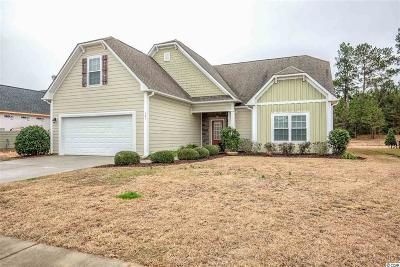 Conway Single Family Home For Sale: 161 Barons Bluff Dr.