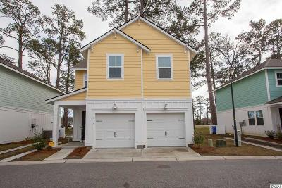 Georgetown County, Horry County Single Family Home For Sale: 4718 Cloister Ln.