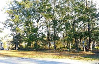 Georgetown County, Horry County Residential Lots & Land For Sale: 185 Preservation Dr.