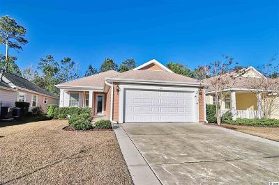 Georgetown County, Horry County Single Family Home For Sale: 321 Declyn Ct.