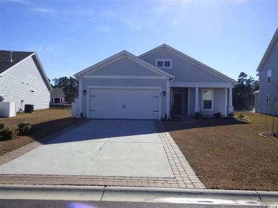 Horry County Single Family Home For Sale: 548 Majorca Loop