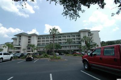 Pawleys Island Condo/Townhouse For Sale: 601 Retreat Beach Circle #219