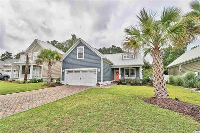 Murrells Inlet, Garden City Beach Single Family Home For Sale: 250 Waties Dr.