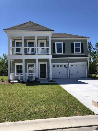 Georgetown County, Horry County Single Family Home For Sale: 4464 Girvan Dr.
