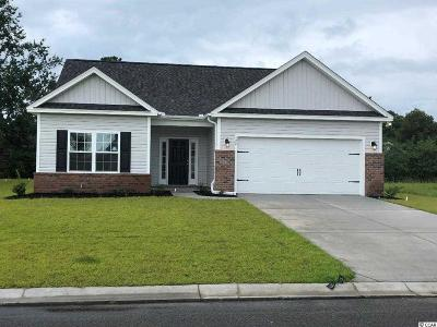 Conway Single Family Home For Sale: 124 Palm Terrace Loop