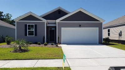 Myrtle Beach Single Family Home For Sale: 2547 Eclipse Dr.