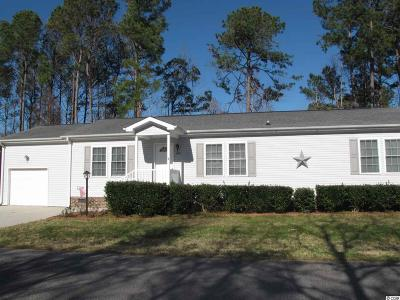Georgetown County, Horry County Single Family Home For Sale: 4509 Manitook Dr.
