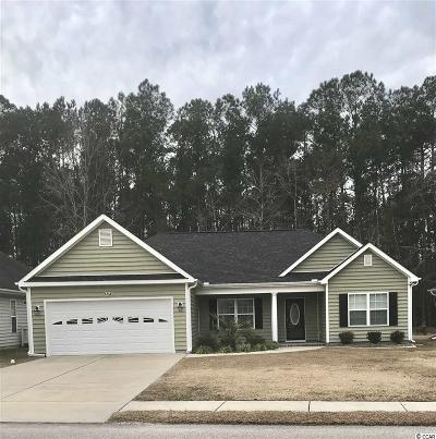 Georgetown County, Horry County Single Family Home For Sale: 815 Helms Way