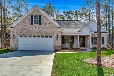 Georgetown County, Horry County Single Family Home For Sale: 307 Old Ashley Loop