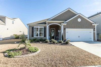 Myrtle Beach Single Family Home For Sale: 4207 Livorn Loop