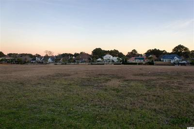 Georgetown County, Horry County Residential Lots & Land For Sale: 870 Waterton Ave.