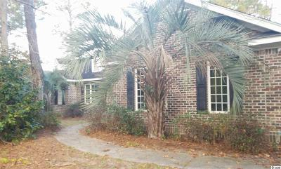 Pawleys Island Single Family Home For Sale: 160 Red Tail Hawk Loop