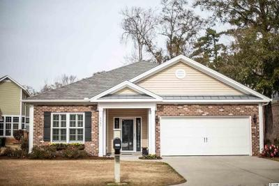 Georgetown County, Horry County Single Family Home For Sale: 4460 Maypop Trail
