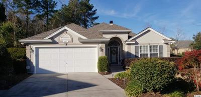 Georgetown County, Horry County Single Family Home For Sale: 311 Caldera Ct.