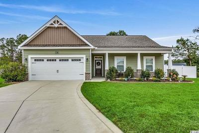 Georgetown County, Horry County Single Family Home For Sale: 736 Londonberry Ct.