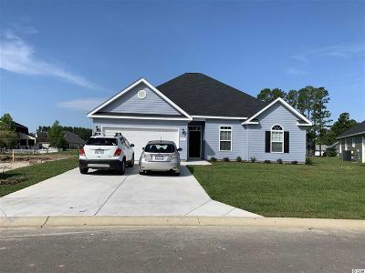 Longs Single Family Home Active-Pend. Cntgt. On Financi: 91 Palmetto Green Dr.