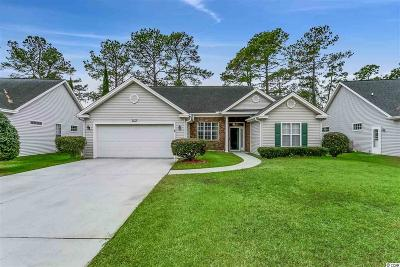 Georgetown County, Horry County Single Family Home For Sale: 1204 Loblolly Ln.