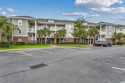 Georgetown County, Horry County Condo/Townhouse For Sale: 6253 Catalina Dr. #1013