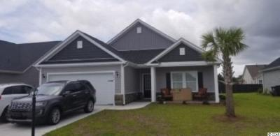 Myrtle Beach Single Family Home Active-Pend. Cntgt. On Financi: 1694 Palmetto Palm Dr.