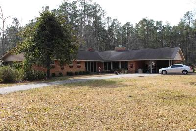 Georgetown County, Horry County Single Family Home For Sale: 3270 Long Avenue Ext.