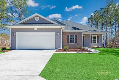 Conway Single Family Home For Sale: 460 Hillsborough Dr.
