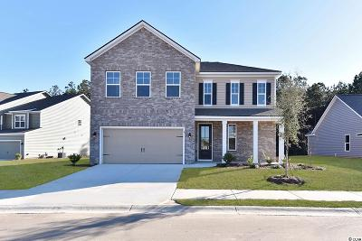 North Myrtle Beach Single Family Home For Sale: 1208 Inlet View Dr.