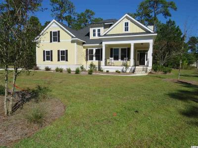 Murrells Inlet Single Family Home For Sale: 14 Melbourn Ct.