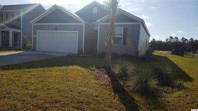 Myrtle Beach Single Family Home For Sale: 576 Affinity Dr.