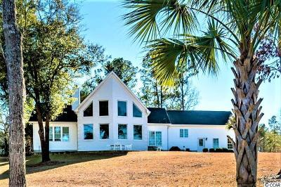 Georgetown Single Family Home For Sale: 3993 Center Rd.