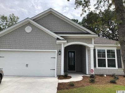Pawleys Island Single Family Home Active-Pend. Cntgt. On Financi: 303 Castaway Key Dr.