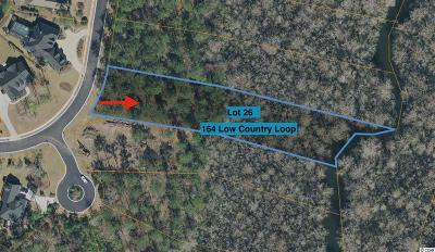 Georgetown County, Horry County Residential Lots & Land For Sale: 164 Low Country Loop