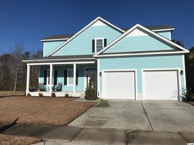 Myrtle Beach Single Family Home For Sale: 5061 Middleton View Dr.