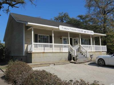 Georgetown County Commercial For Sale: 1118 Front St.