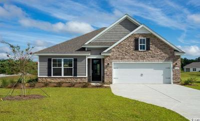Murrells Inlet Single Family Home For Sale: 234 Star Lake Dr.