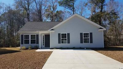 Myrtle Beach Single Family Home For Sale: 321 Rylan Jacob Pl.