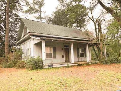 Horry County Single Family Home For Auction: 1001 Elm St.