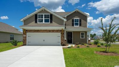 Murrells Inlet Single Family Home For Sale: 226 Star Lake Dr.