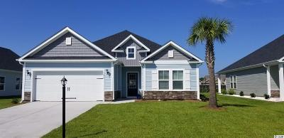 Myrtle Beach Single Family Home Active-Pend. Contingent Contra: 1678 Palmetto Palm Dr.