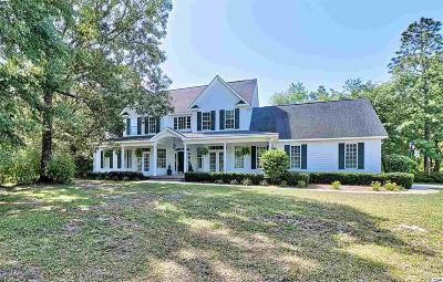 Pawleys Island Single Family Home For Sale: 675 Beaumont Dr.