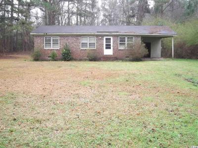 Conway Single Family Home For Sale: 747 Bucksville Dr.