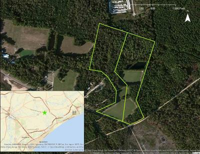 Georgetown County, Horry County Residential Lots & Land For Sale: Old Reaves Ferry Rd.